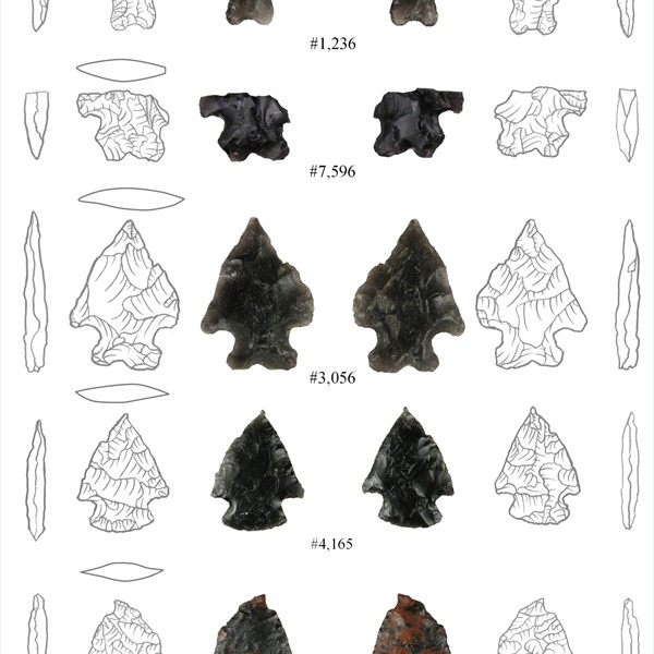Archaic dart points from Cultural Levels 5 (upper three) and 6 (lower two)